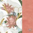 Heron in Pink Lotus kócsag és rózsaszín lótusz minta papaya színű velvettel kombinálva